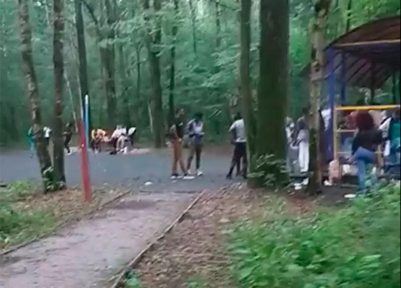 Москвичи жалуются на «африканские шабаши» в парке