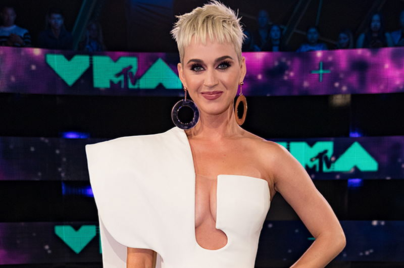 Певица Кэти Перри получила критику в свой адрес за поддержку сторонников Трампа