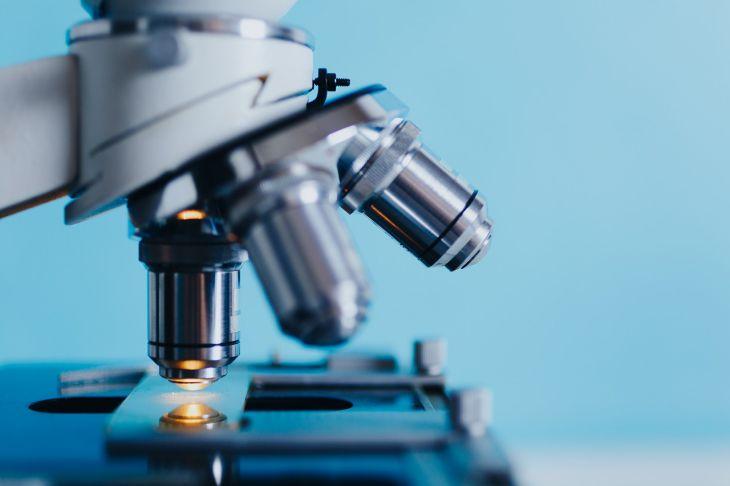 Эффект Варбурга разгадан. Учёные выяснили, как раковые клетки производят энергию