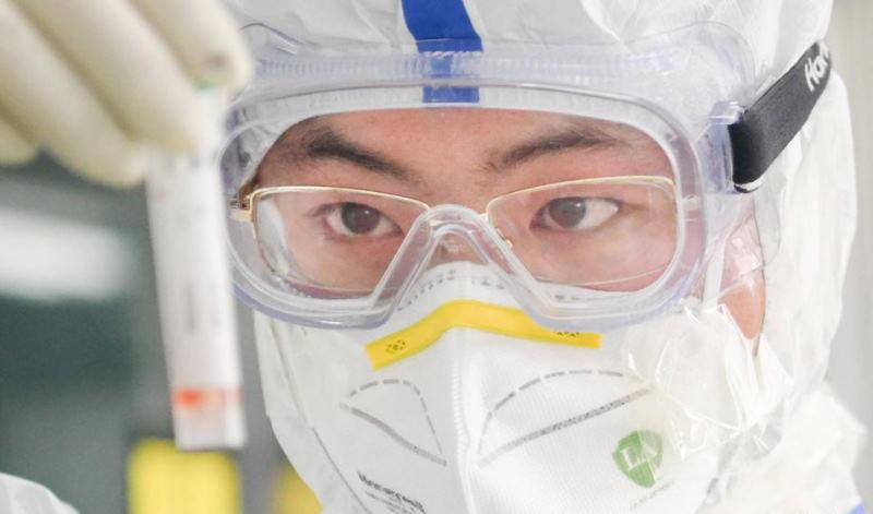 Эксперты ВОЗ выяснили, создан ли SARS-CoV-2 искусственно в Китае