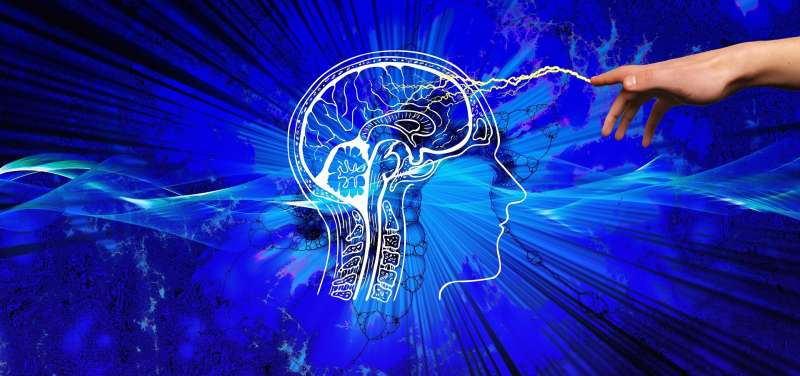 «Вращение воспоминаний»: нейробиологи обнаружили необычную способность мозга