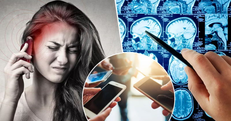 Учёные доказали, что смартфоны не вызывают рак