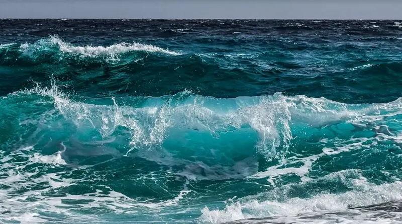 Неожиданное открытие: Мировой океан защищает человечество от вирусов