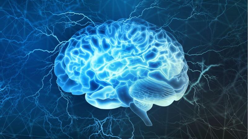 В мозге человека обнаружены ранее не фиксированные сигналы