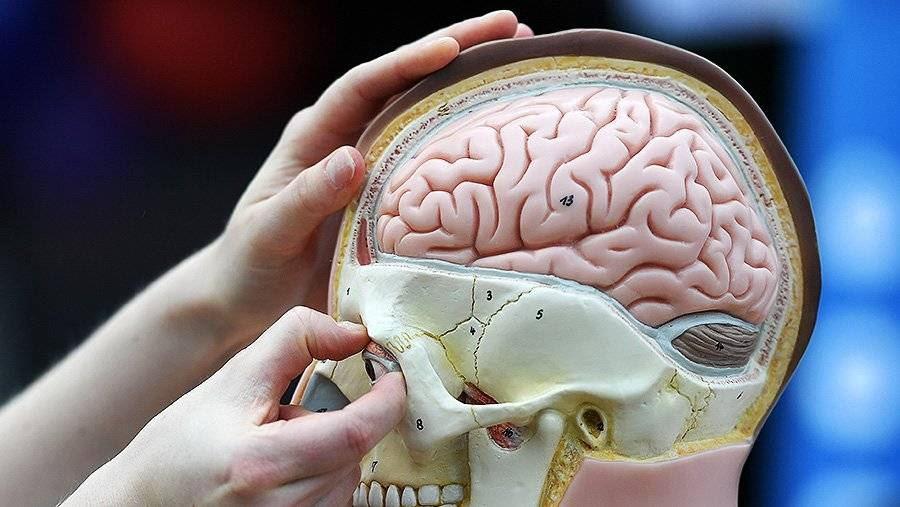 Учёные измерили «предел прочности человека»