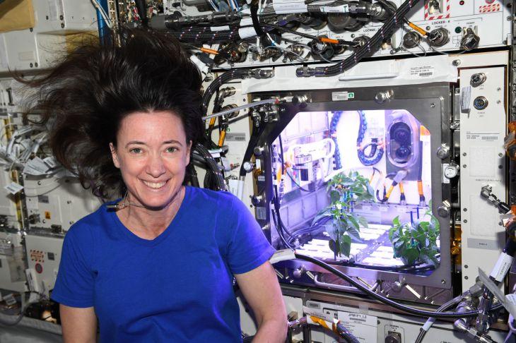 На Международной космической станции зацвёл космический перец